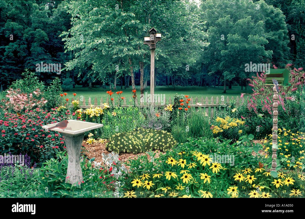 Gemischte Singvögel im Garten entworfen, um Vögel mit Vogeltränke ...