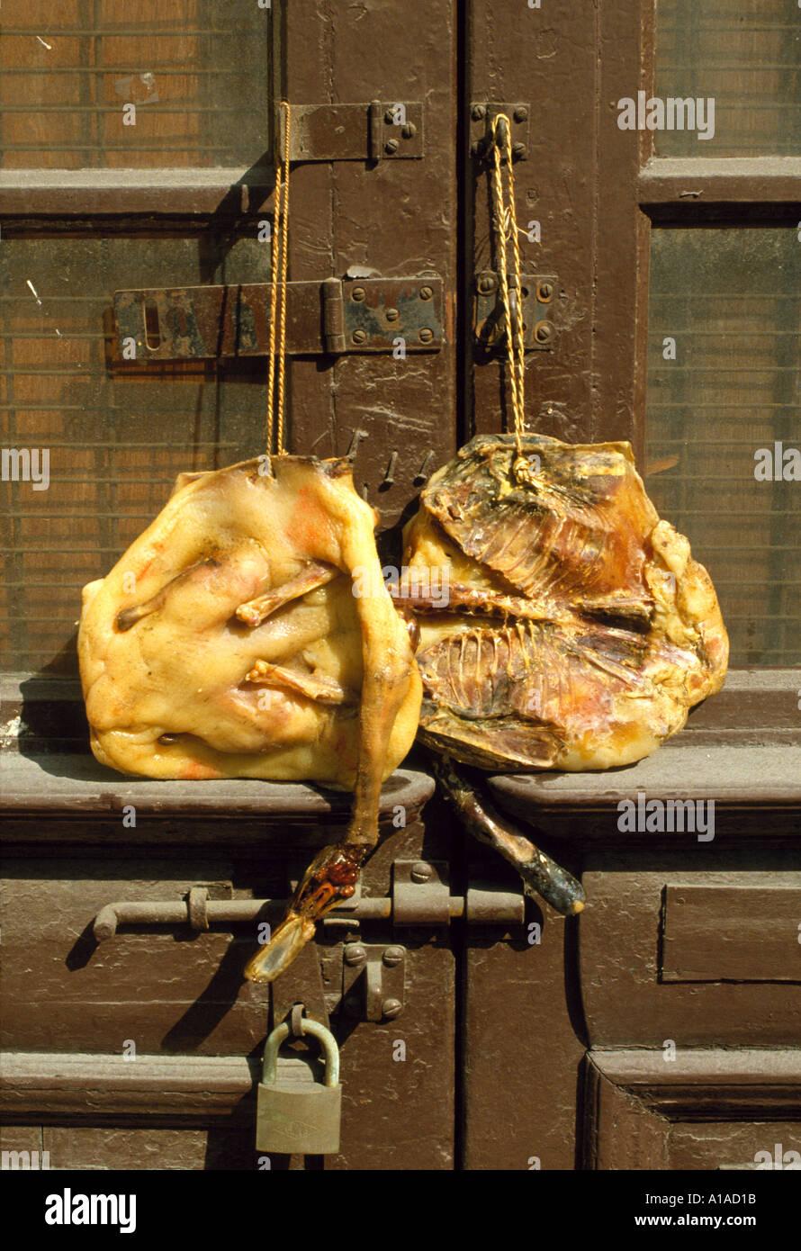 Tote Enten Bringt Man Zum Chinesen