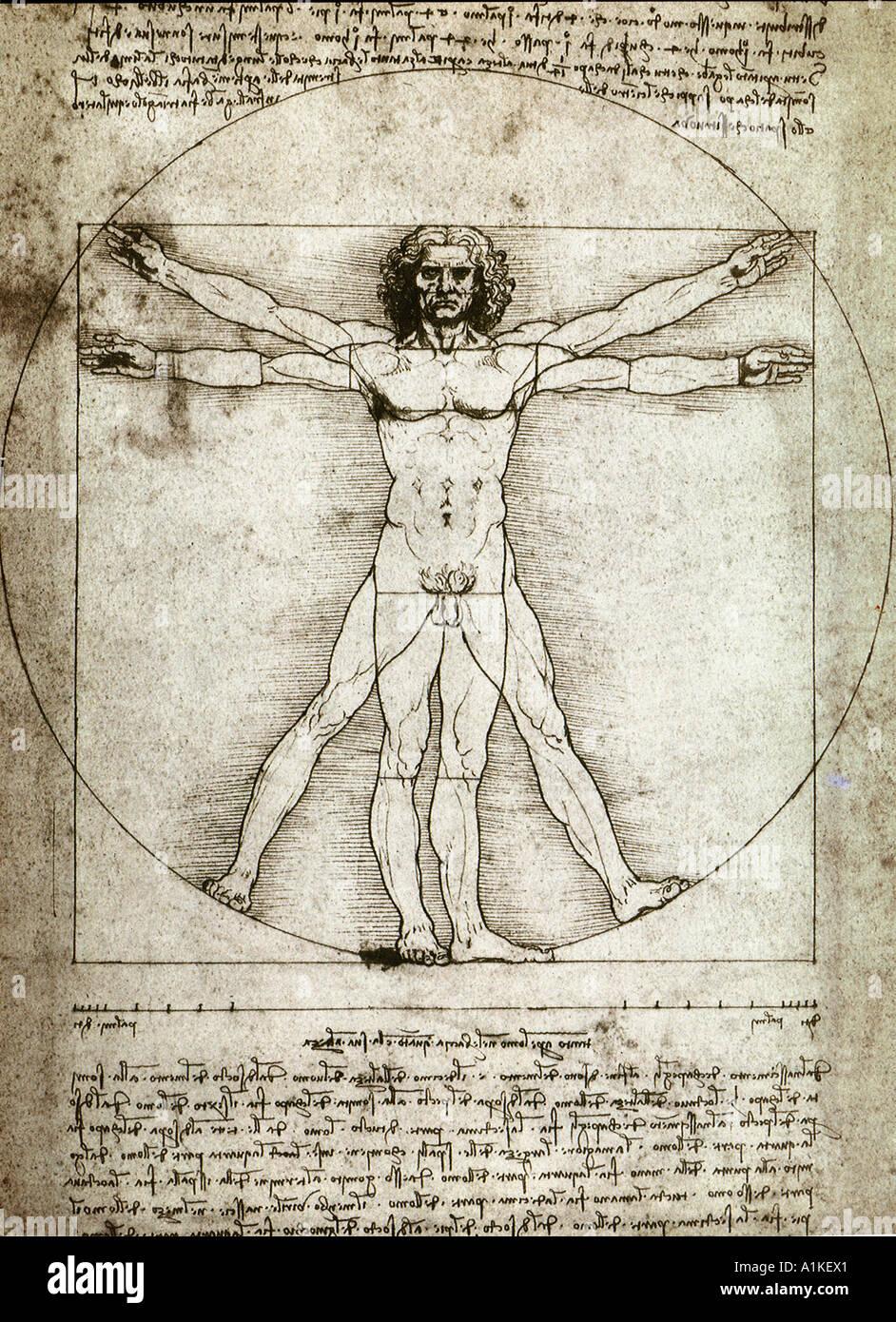 Vitruvian Mann Skizze von Leonardo da Vinci Stockfoto, Bild: 5875232 ...