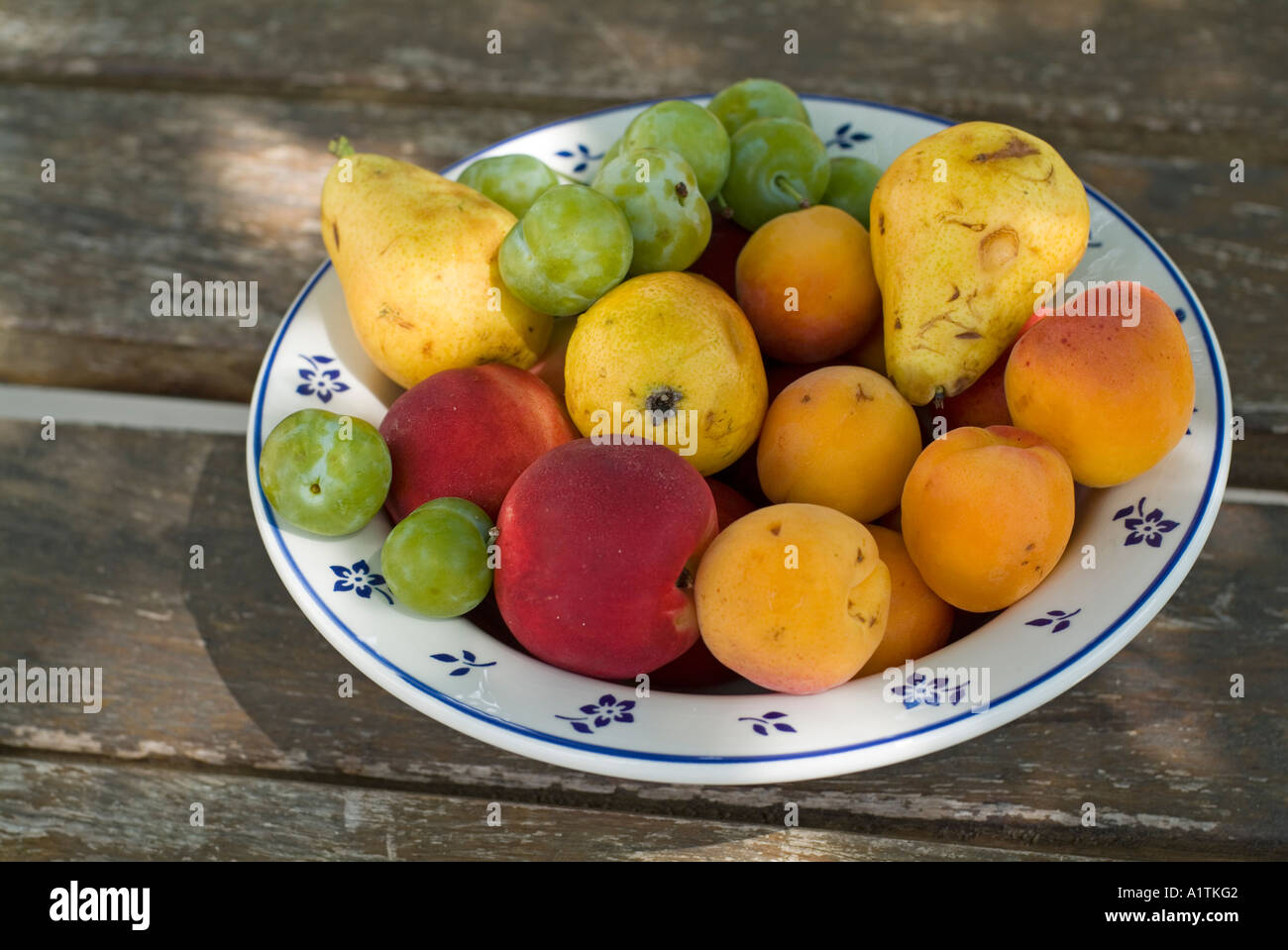 Schale mit Obst Stockbild