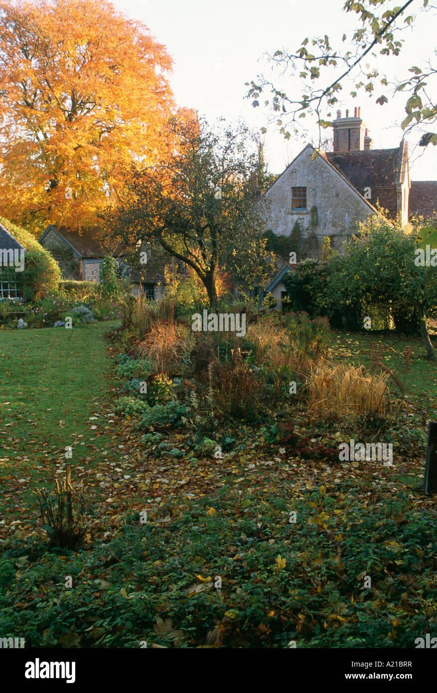 gräser und kleiner baum in grenze im garten im herbst mit bunten