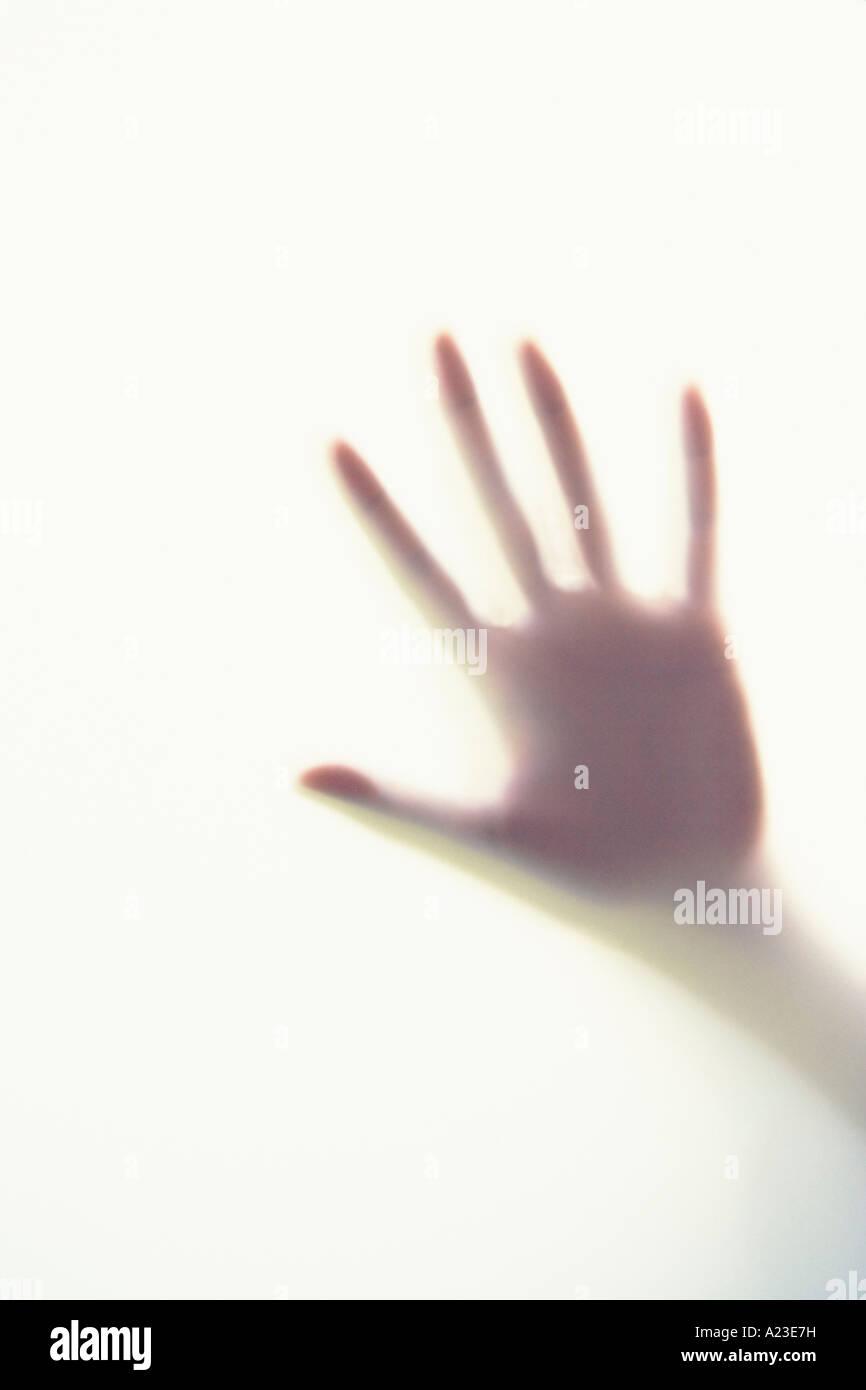 Silhouette von Hand gegen Milchglas Erwachsene Frau weiblich Stockbild