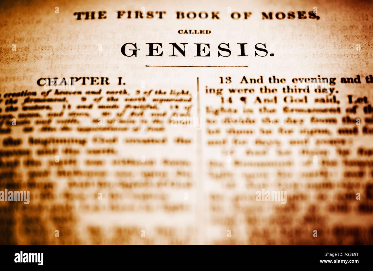 Genesis Stockbild