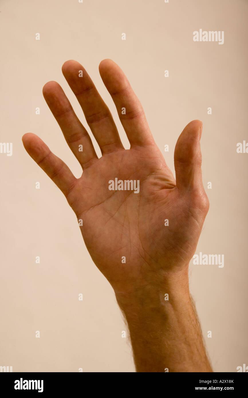Hand mit den Fingern und dem Daumen. Stockbild