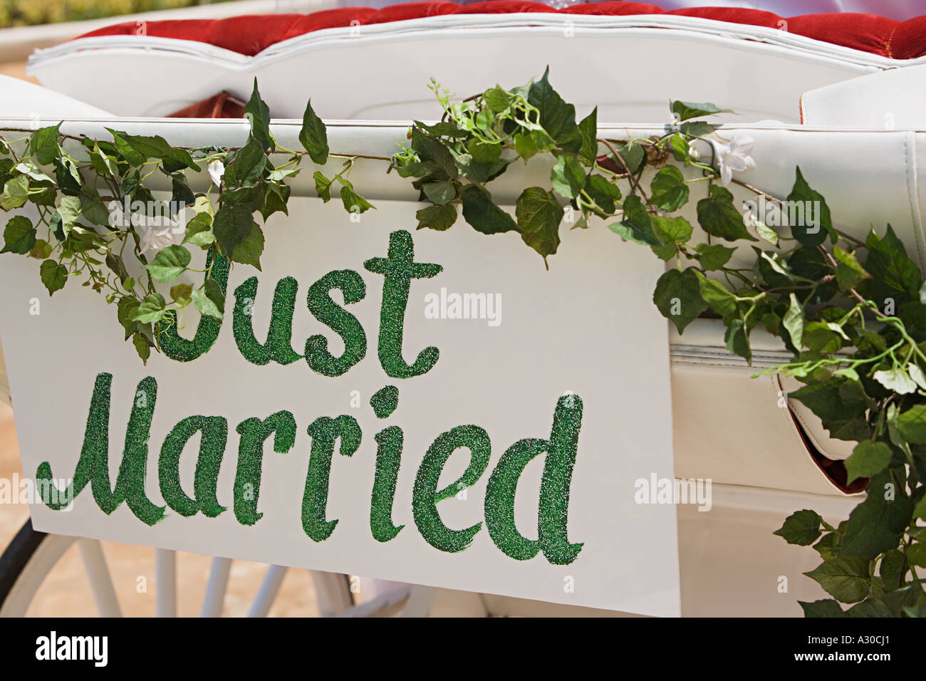 Just Married Zeichen auf Schlitten Stockbild