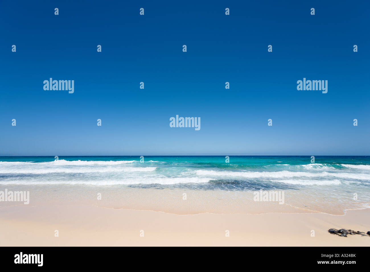 Strand in den Parque Natural de Corralejo, Fuerteventura, Kanarische Inseln, Spanien Stockbild