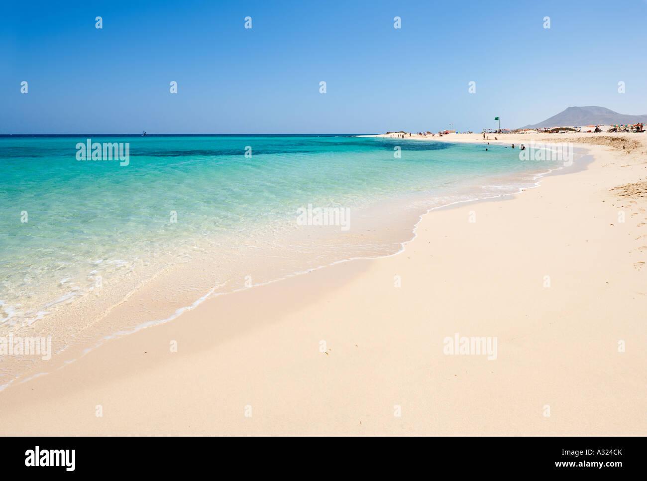 Strand, Parque Natural de Corralejo, Fuerteventura, Kanarische Inseln, Spanien Stockbild