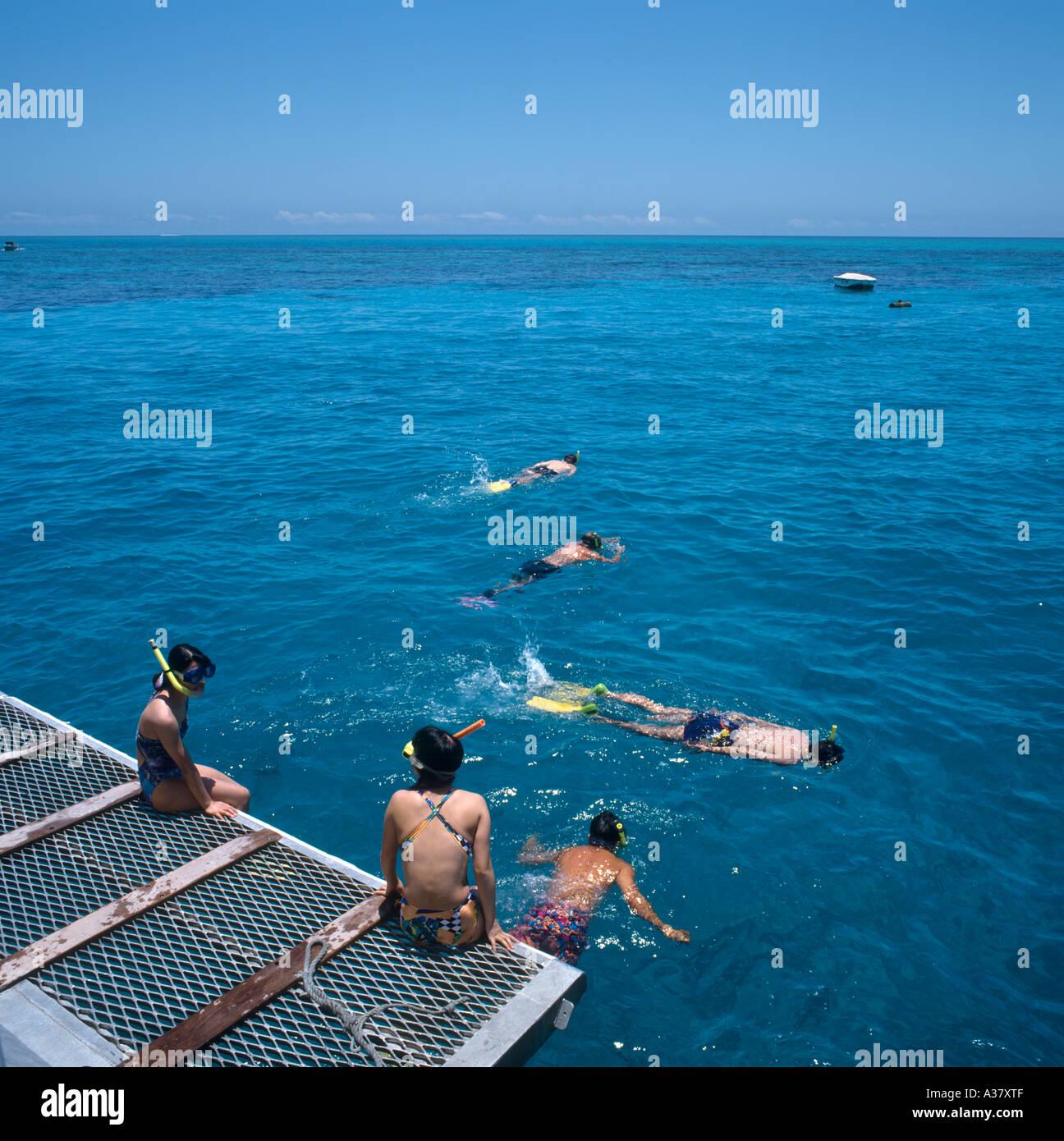 Schnorcheln vor dem Heck von einem Ausflugsschiff über das Great Barrier Reef, Cairns, Queensland, Australien Stockbild