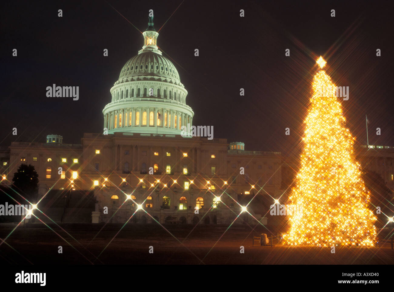 Us Capitol Building Christmas Tree Stockfotos & Us Capitol Building ...