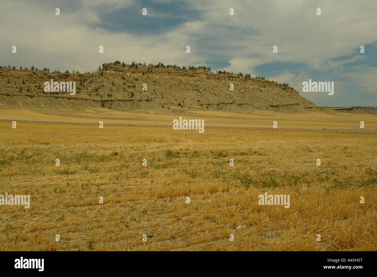 canyon creek hindu dating site Picture canyon is located 35 miles  evidence of big game hunters dating back some 12,000 years ago is apparent  the apishipa indian site houses measured.