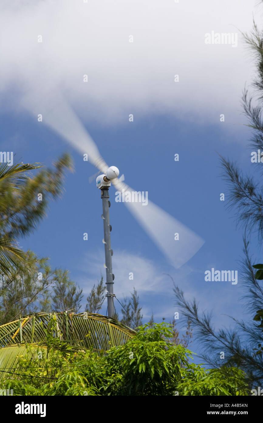 Windgetriebene-Generator zur Stromerzeugung in 'Rodrigues'. Starker Wind werfen ^ Filaos und Palmen Stockbild