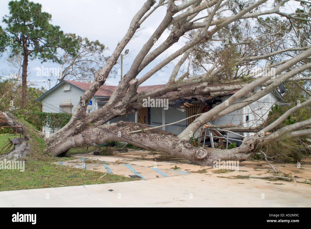 Hurrikan Frances Saint Lucie County Florida Schaden Zerstörung Sturm Nachwirkungen Schutt Katastrophengebiet Bäume auf Häuser gefallen Stockbild