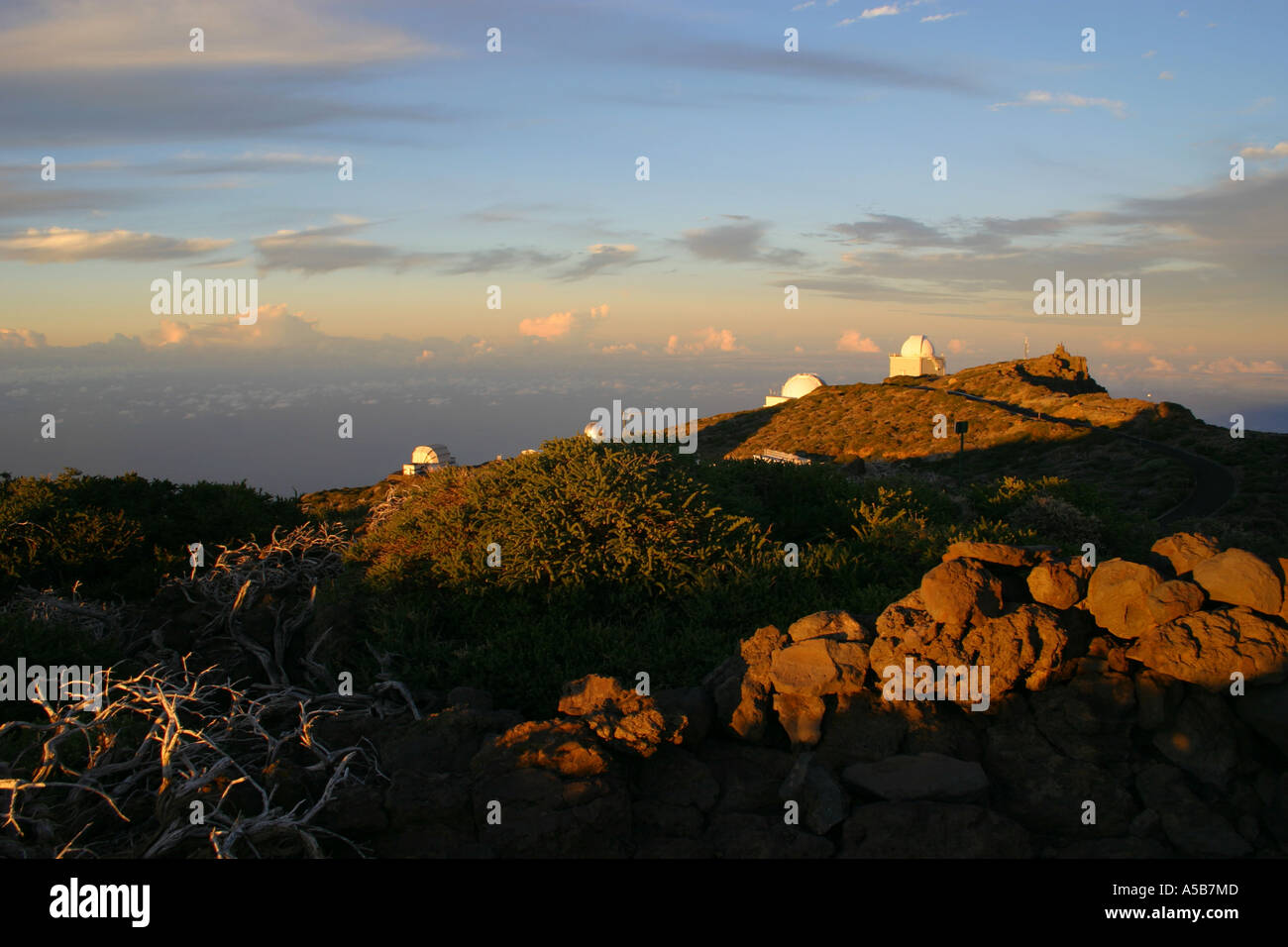Skywatcher newton teleskop ota eur picclick de