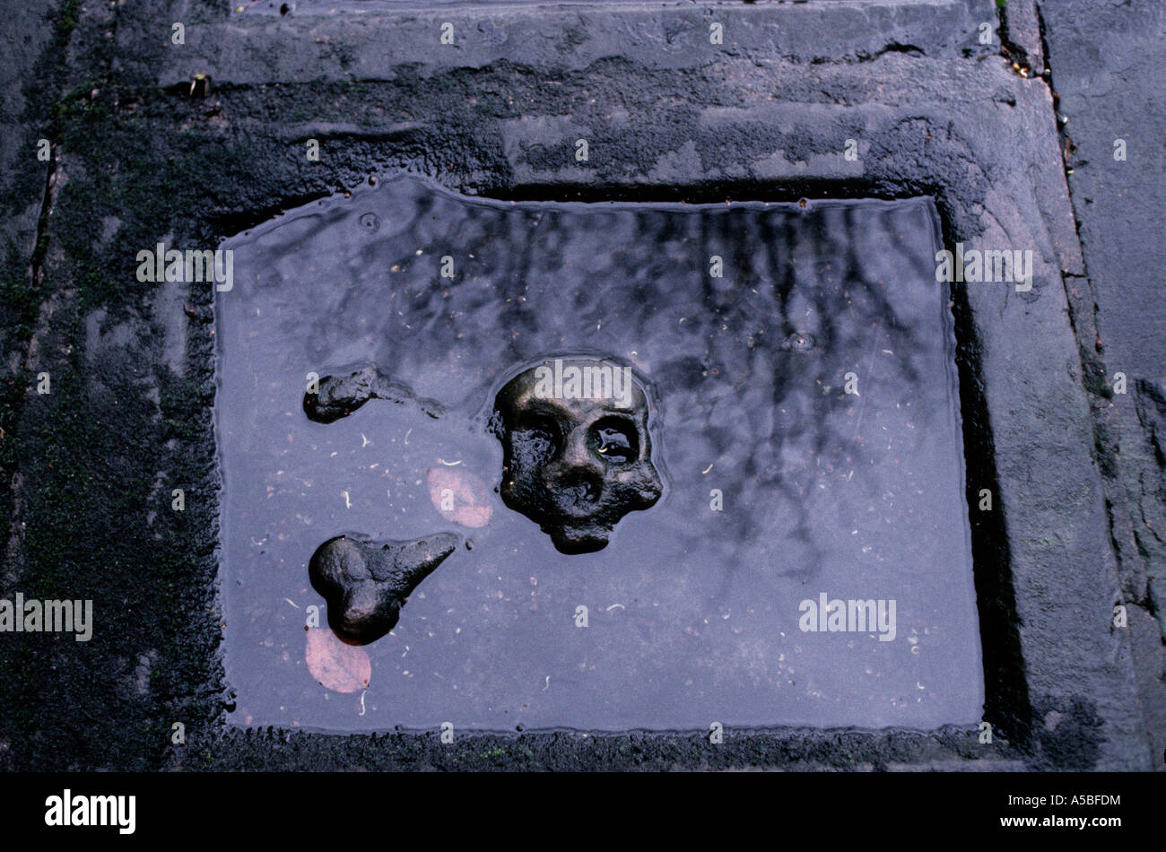 TOTENKOPF-FRIEDHOF IN NEWCASTLE, ENGLAND Stockbild