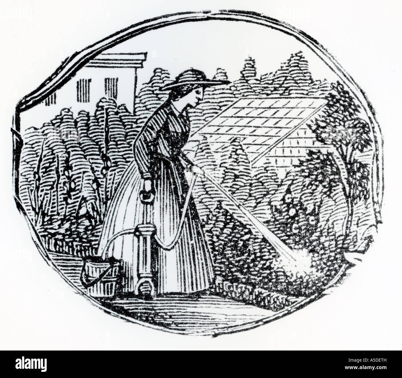 Gravieren von Frau Bewässerung von Pflanzen in einem Garten Stockbild