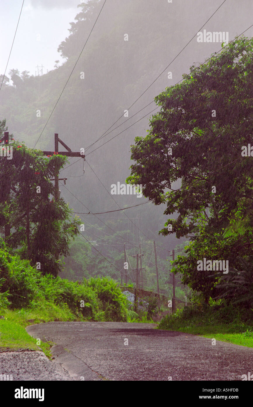 Stromleitungen im Regen Dominica West Indies Stockbild