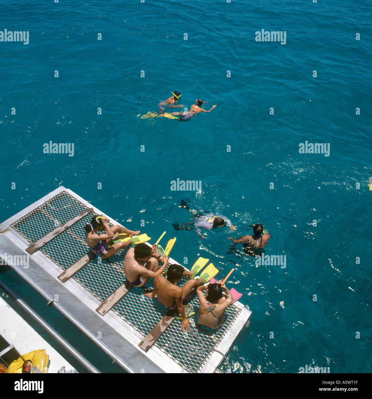 Schnorcheln von hinten der Katamaran, Great Barrier Reef Ausflug, Cairns, North Queensland, Australien Stockbild