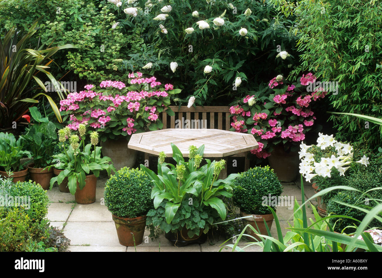 Beautiful Terrasse Tisch Hortensie Lilien Gartenmbel Rosa Wei Blumen  Pflaster Terrasse Box Kugeln Tpfe With Box Fr Gartenmbel