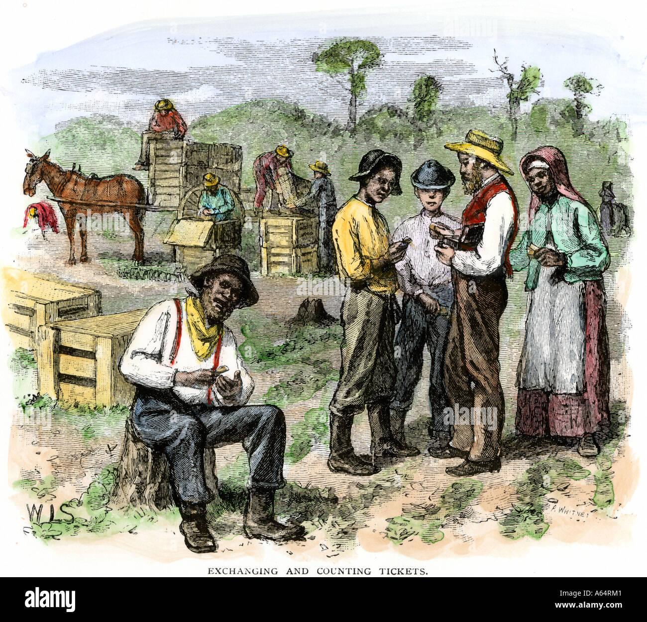 Ehemalige Sklaven sammeln ihre Bezahlung nach der Ernte Erdbeeren beim Wiederaufbau in Virginia der 1870er Jahre Stockbild