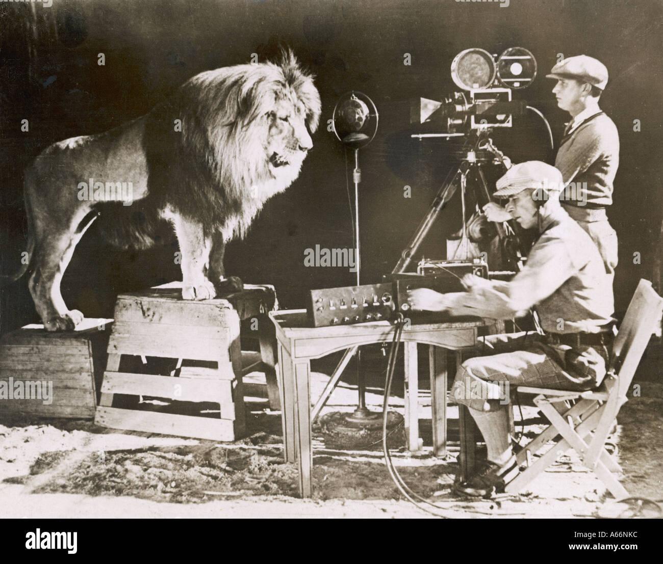 MGM-Löwe Stockbild