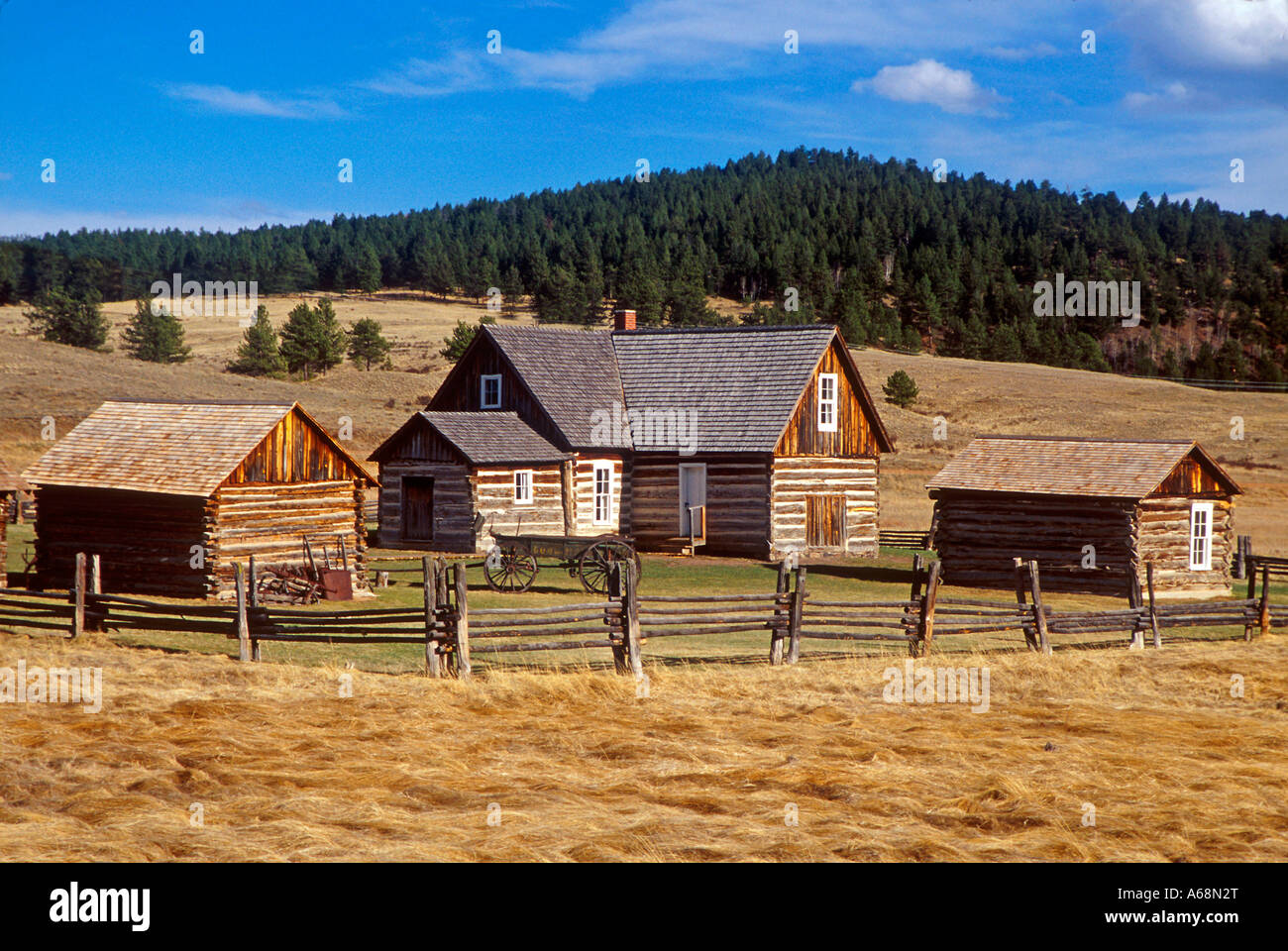 Horbek Homestead Florissant Colorado Stockbild