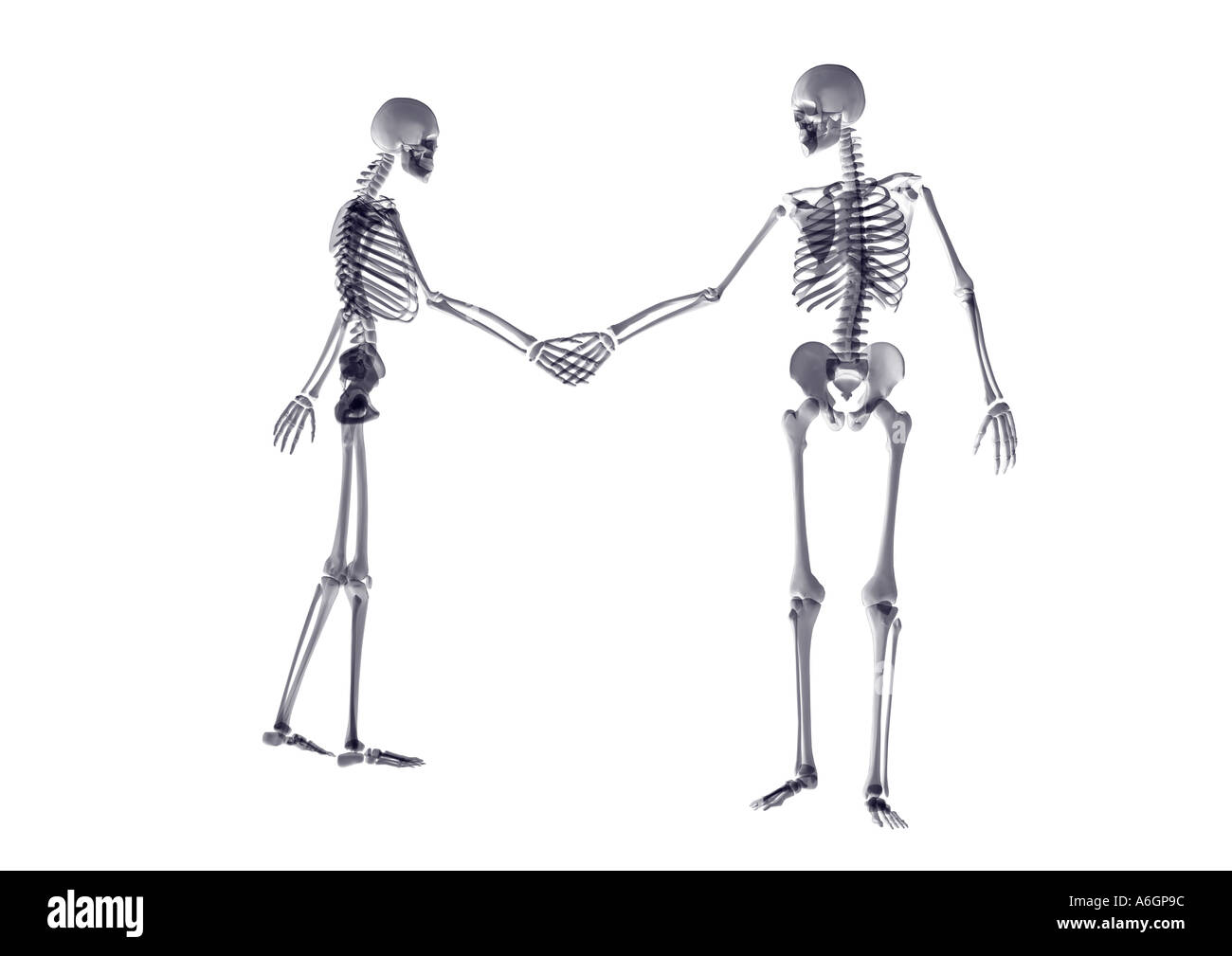 Ungewöhnlich Handknochen Namen Ideen - Menschliche Anatomie Bilder ...