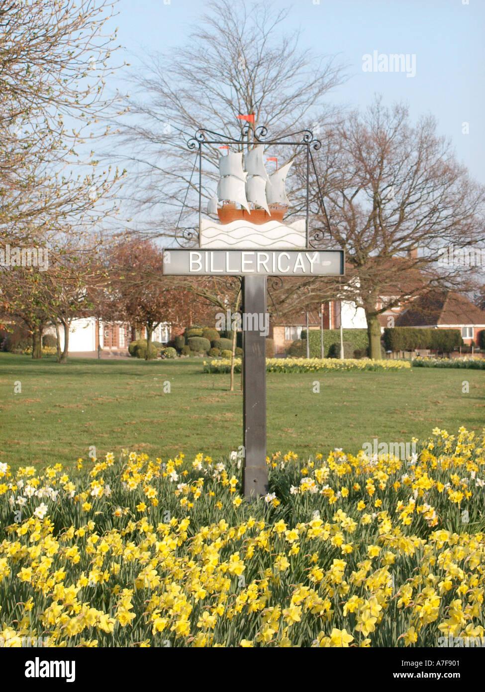 Billericay Essex UK Open Space mit Narzissen in der Stadt Zeichen der Mayflower Schiff, zu Massachusetts segelte einschließlich einiger lokaler Englisch Pilger Stockbild