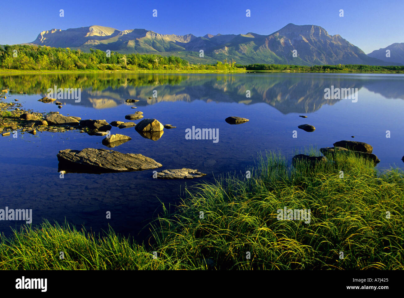 Sofa Mountain Waterton Lakes Nationalpark Alberta Kanada Stockfoto
