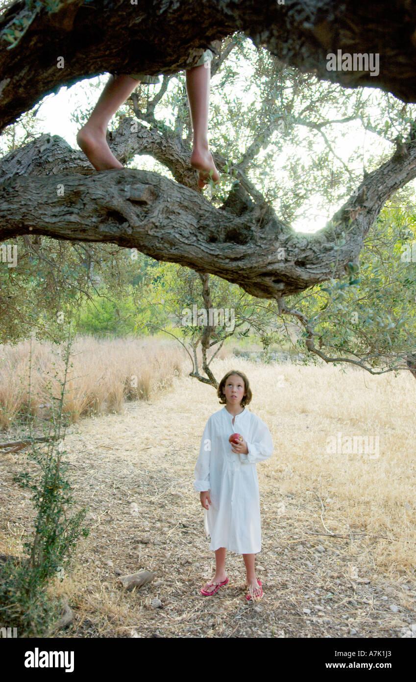 Junge im Baum, Mädchen im Feld Stockbild