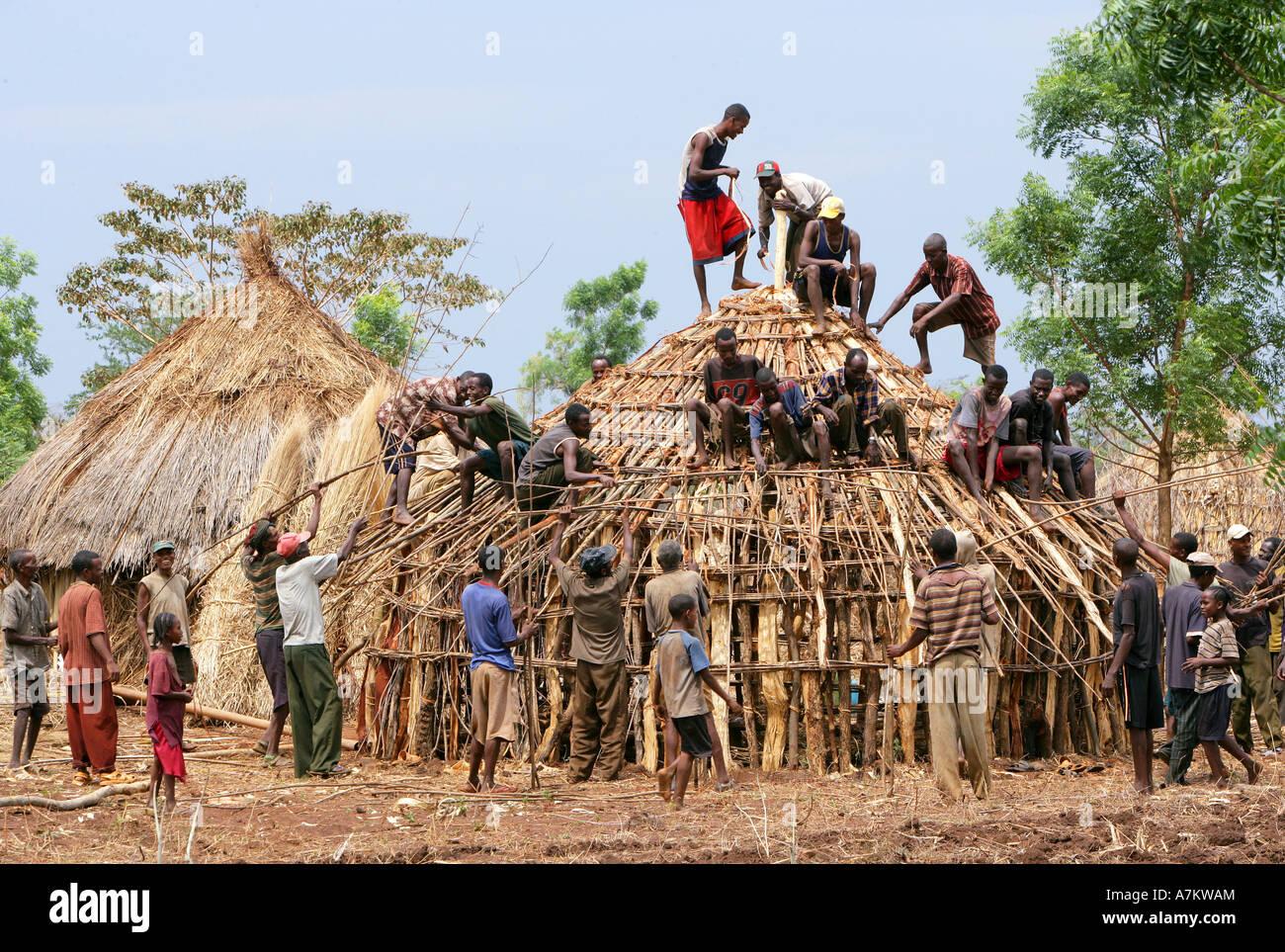Äthiopien   Traditionelles Dorf Beherbergt Alle Nachbarn Hilfe In Den Bau  Eines Holzhauses