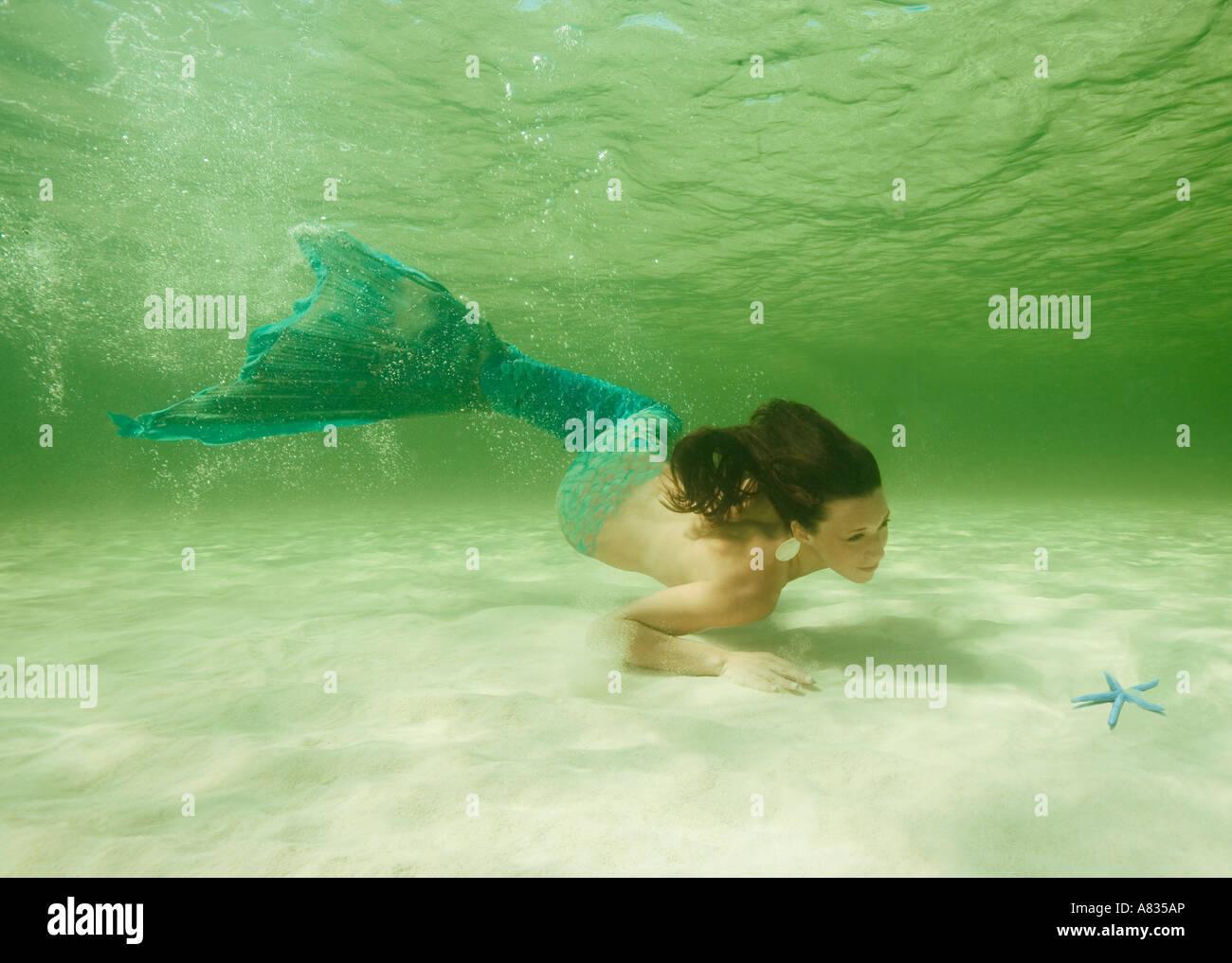 Meerjungfrau im flachen Wasser über Sandboden Conch Baum Strand Cozumel Mexiko Stockbild