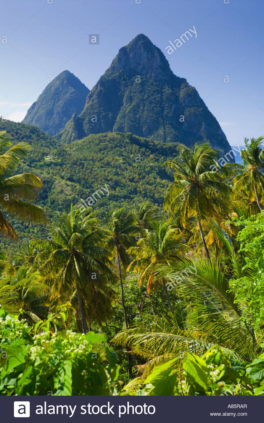 Die Pitons, in der Nähe von Soufrière, St. Lucia, Inseln unter dem Winde, Caribbean Stockbild