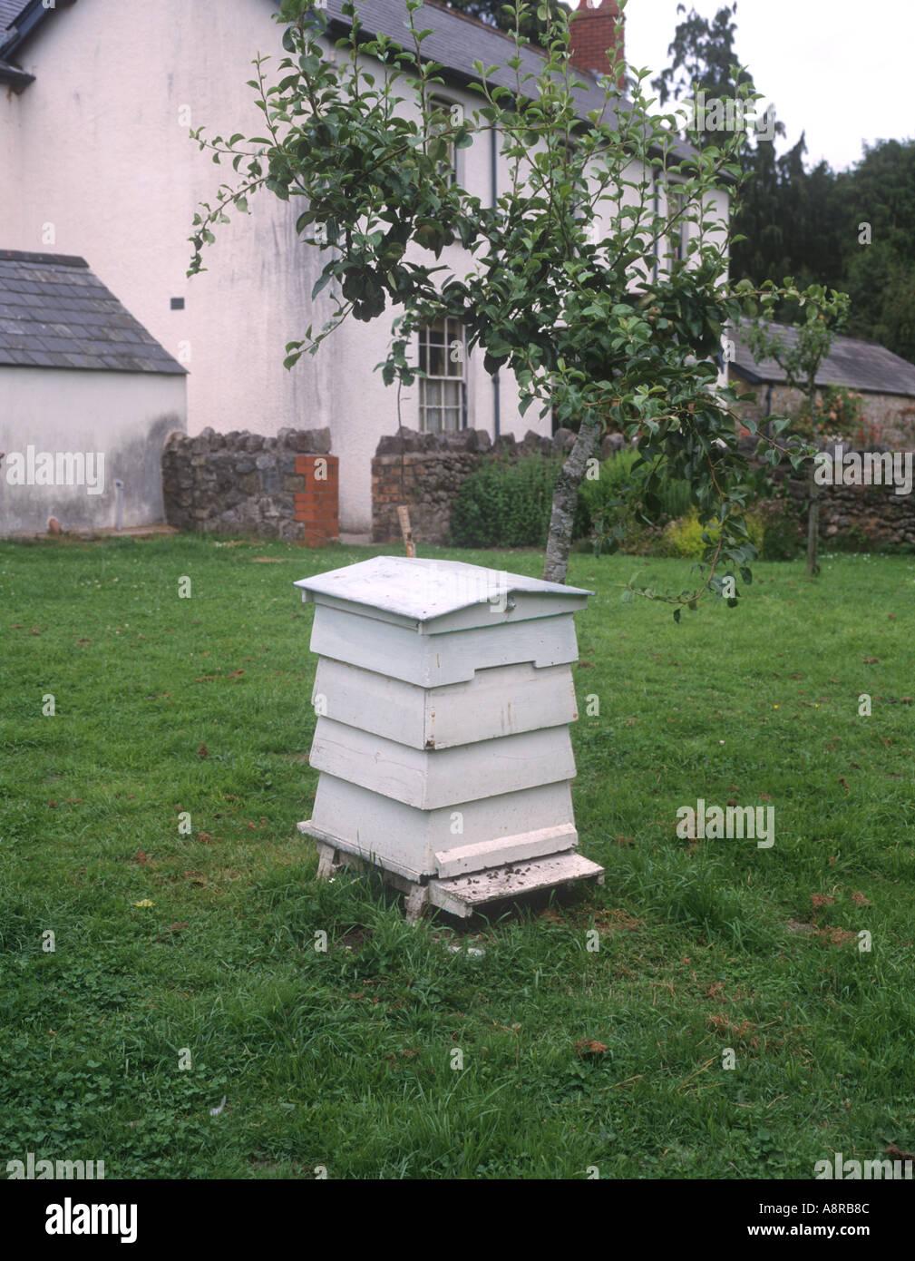 Bienenstock Im Garten Ferienhaus Wales Stockfoto Bild 2259851 Alamy