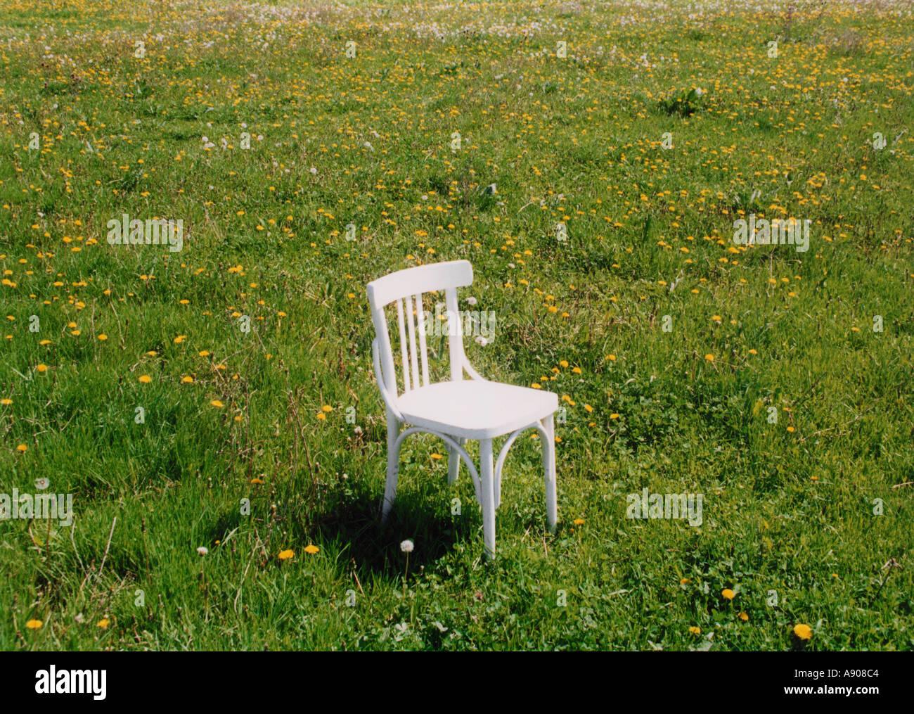 Weißer Stuhl Auf Der Wiese Mit Gelben Blüten Stockfoto Bild 592068