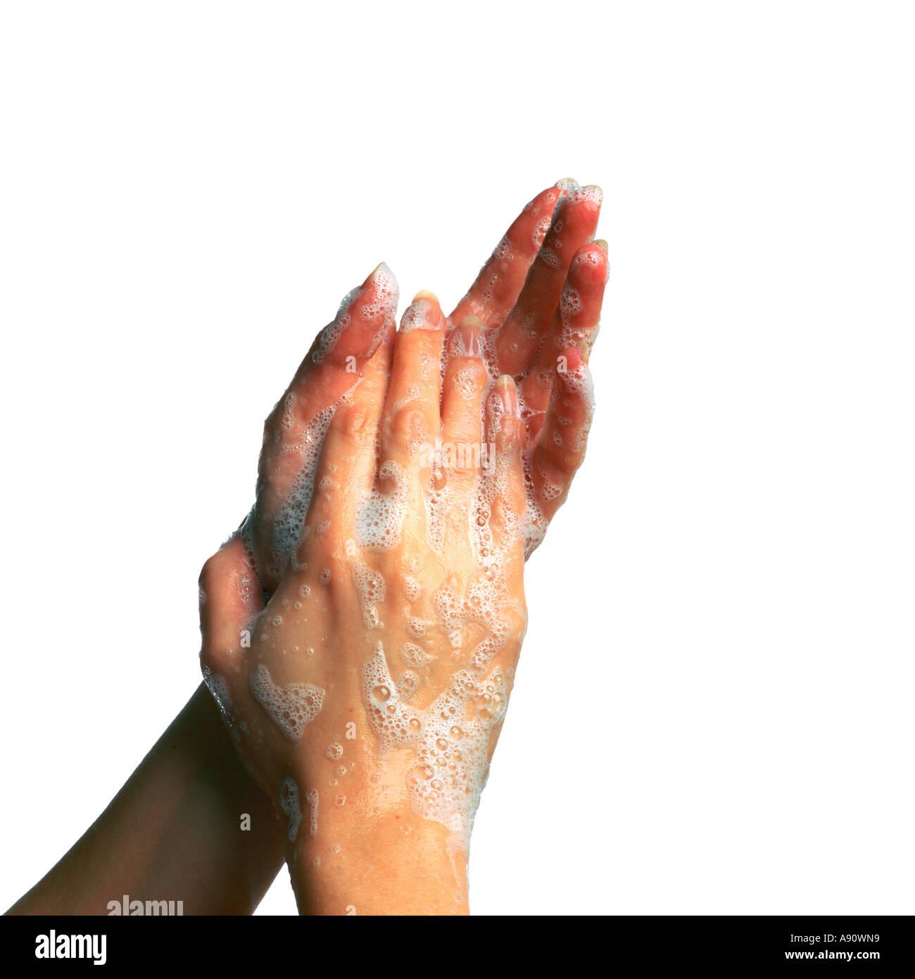 Seifigen Händen Einseifen bis Stockfoto