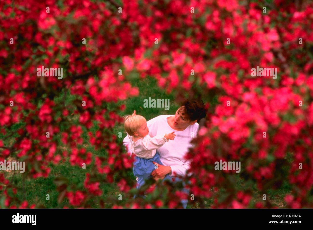 Individual Male Female Flowers Stockfotos & Individual Male Female ...