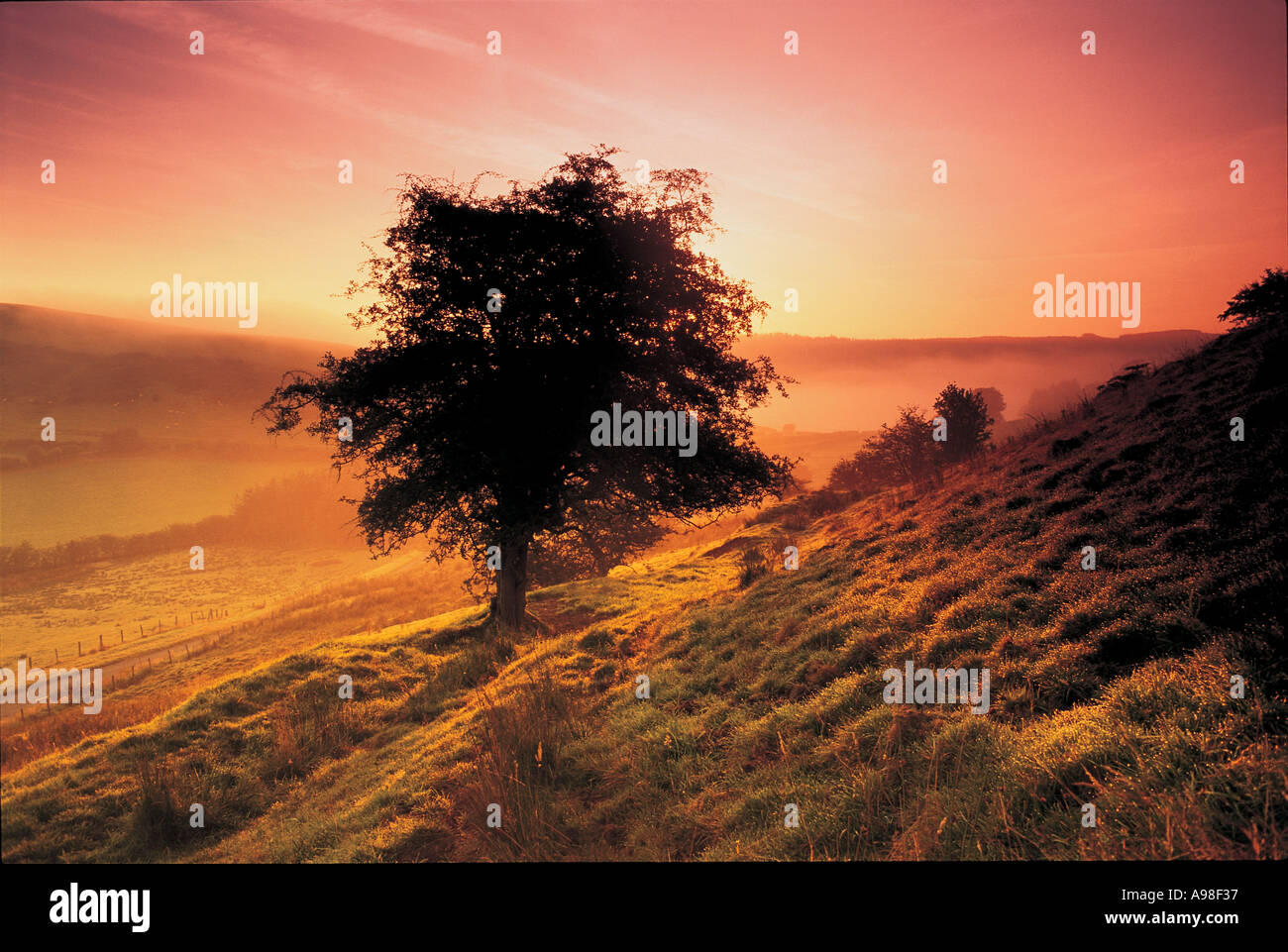Sonnenuntergang in Wales Großbritannien Stockbild