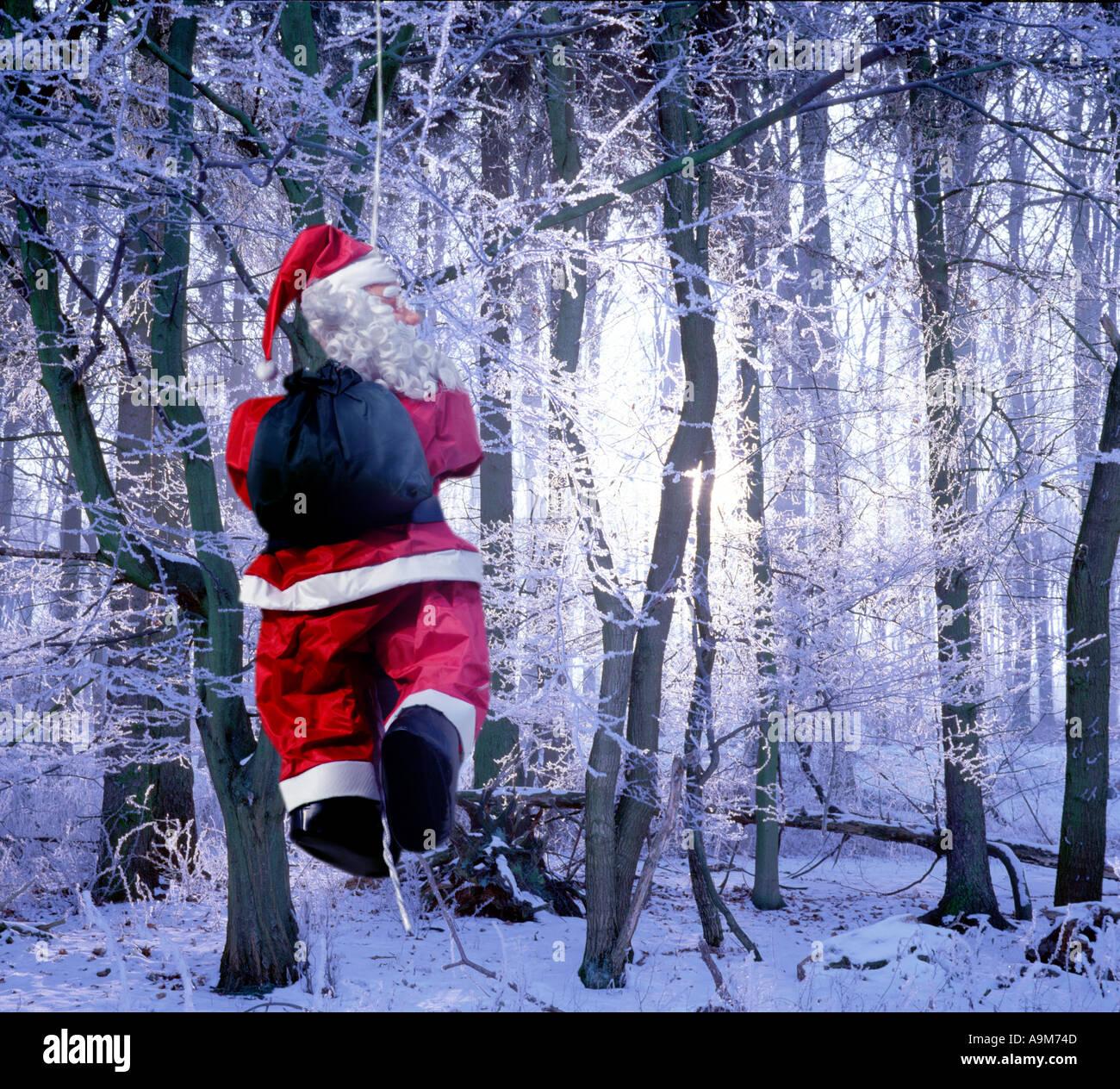 Santa Claus im Winterwald Stockbild