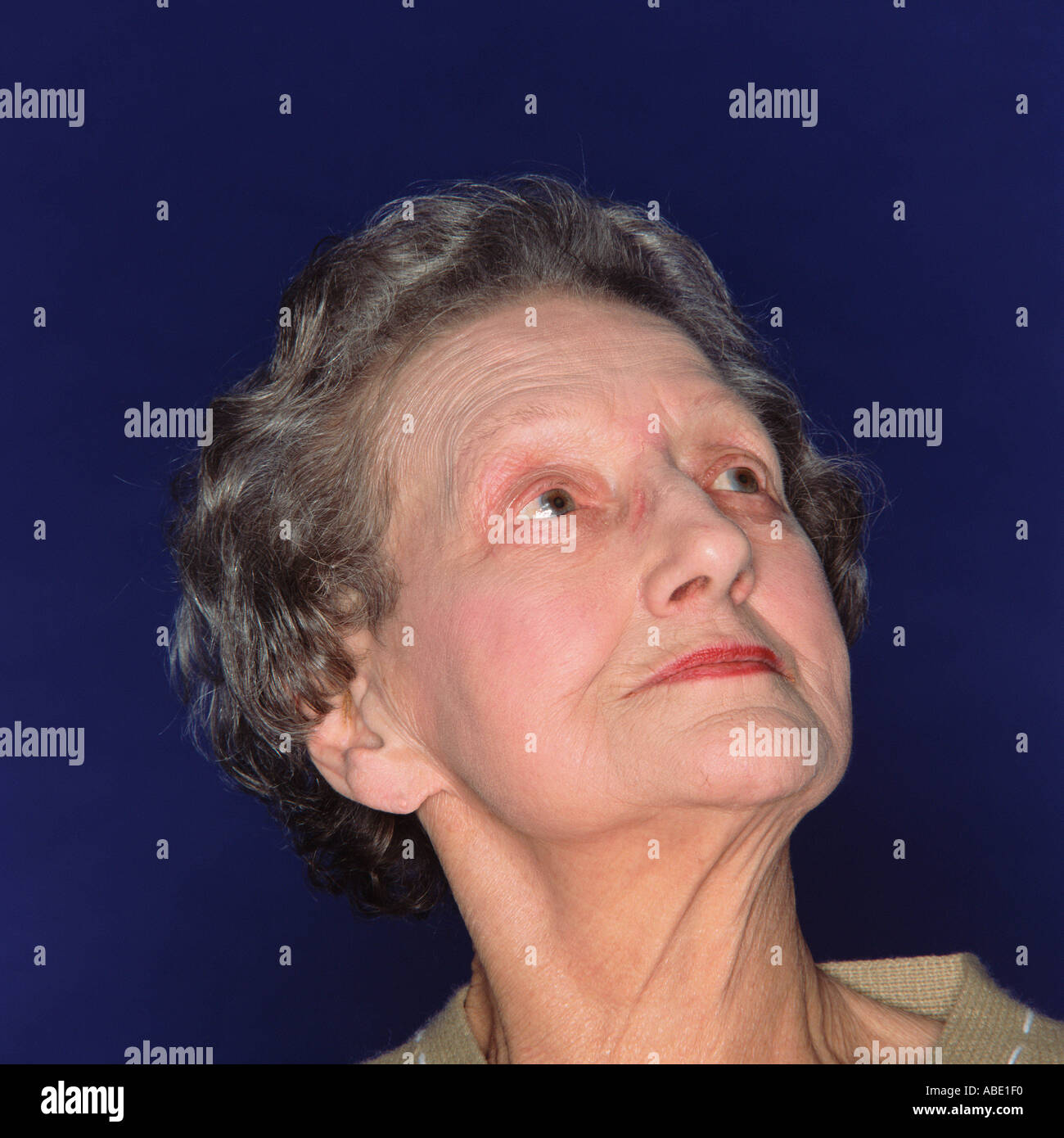 Porträt einer eleganten senior Frau Stockbild