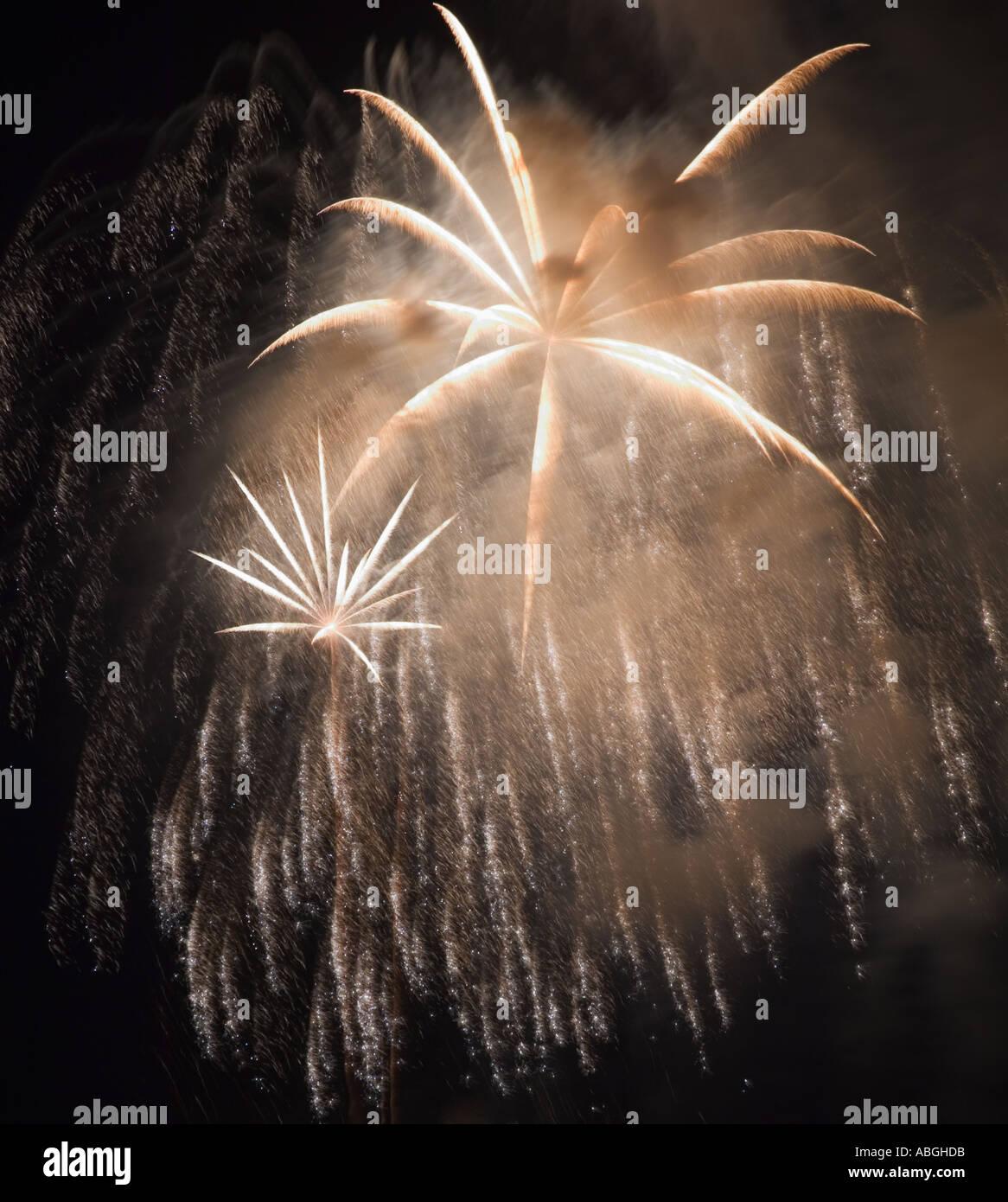 Feuerwerk am Nachthimmel Stockfoto