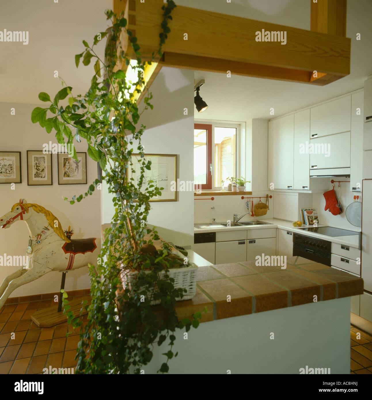 Weiße 70er Jahre Küche mit Zimmerpflanze auf gefliesten ...