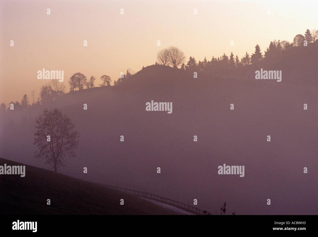 nebelige Landschaft am Morgen Kanton Appenzell Ausserrhoden-Schweiz Stockbild