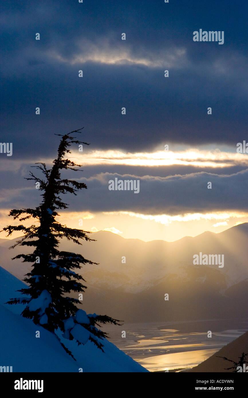 Strahlen der Sonne durch Wolken bei Sonnenuntergang entlang Turnagain Arm w eine Fichte im Vordergrund Chugach National Stockfoto