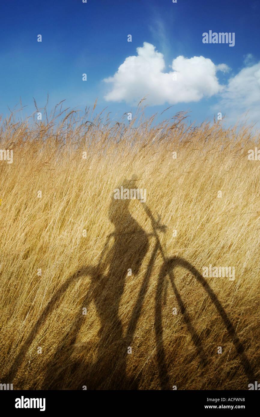 Foto des Schattens von jemand mit dem Fahrrad Stockbild