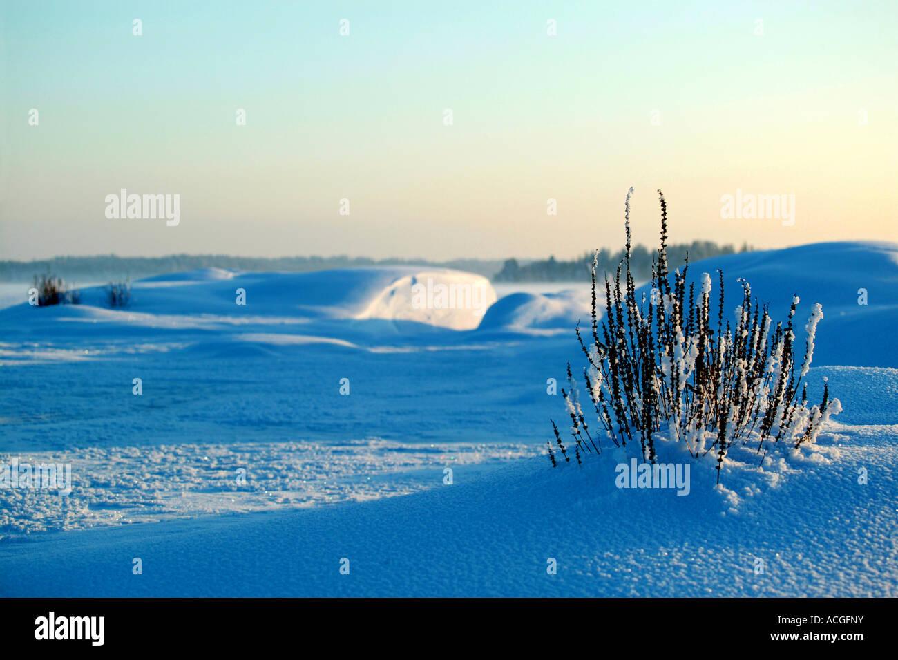 Winterlandschaft bei Moskjæra in den See Vansjø, Råde Kommune, Østfold Fylke, Norwegen. Stockbild