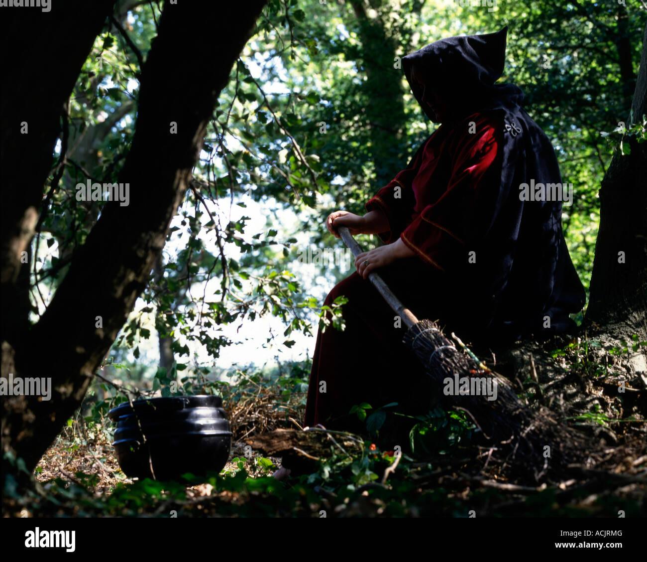 Hexe mit Besen und Kessel im Wald Stockbild