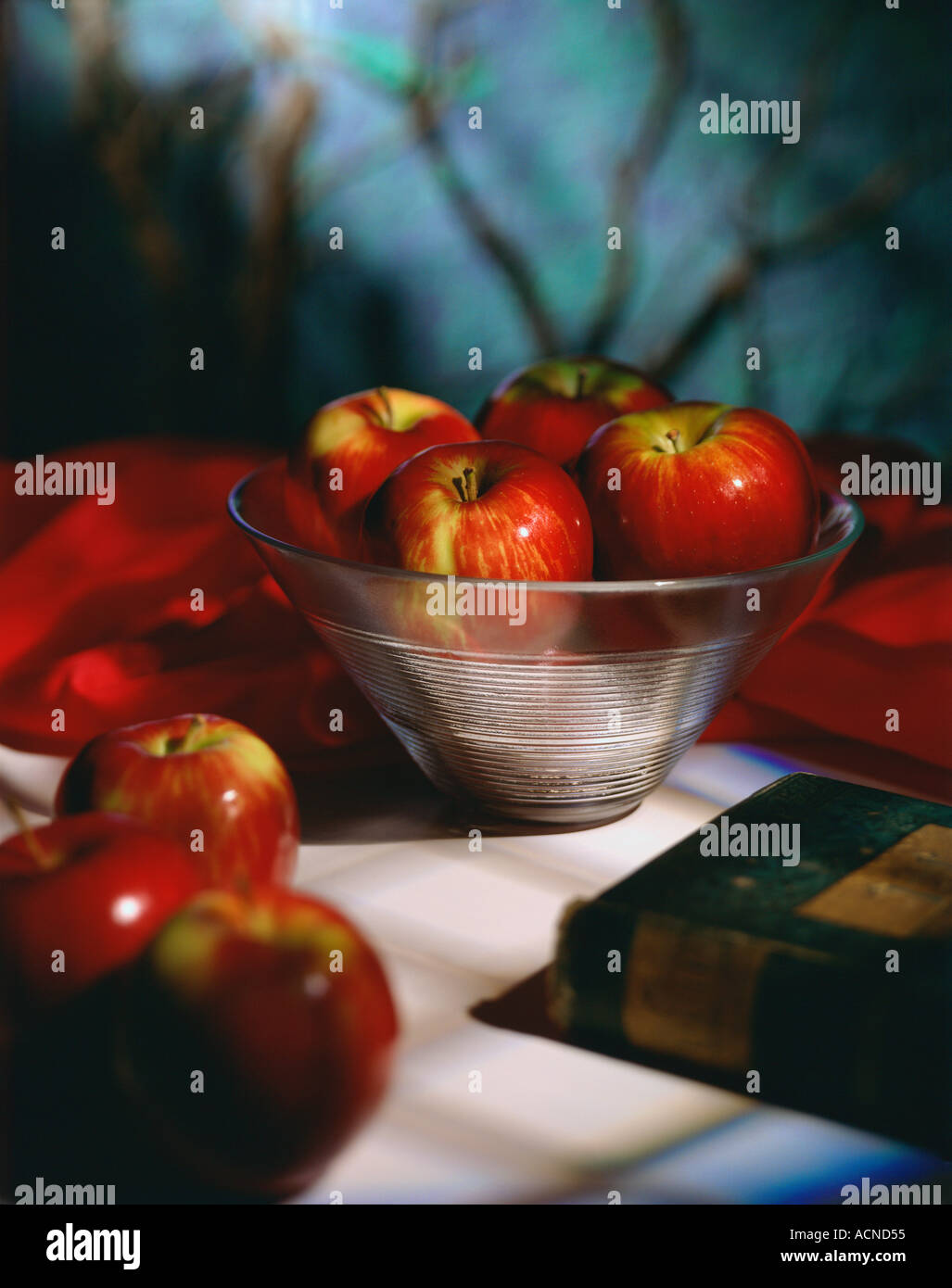Schüssel mit Gala Äpfel Stockbild