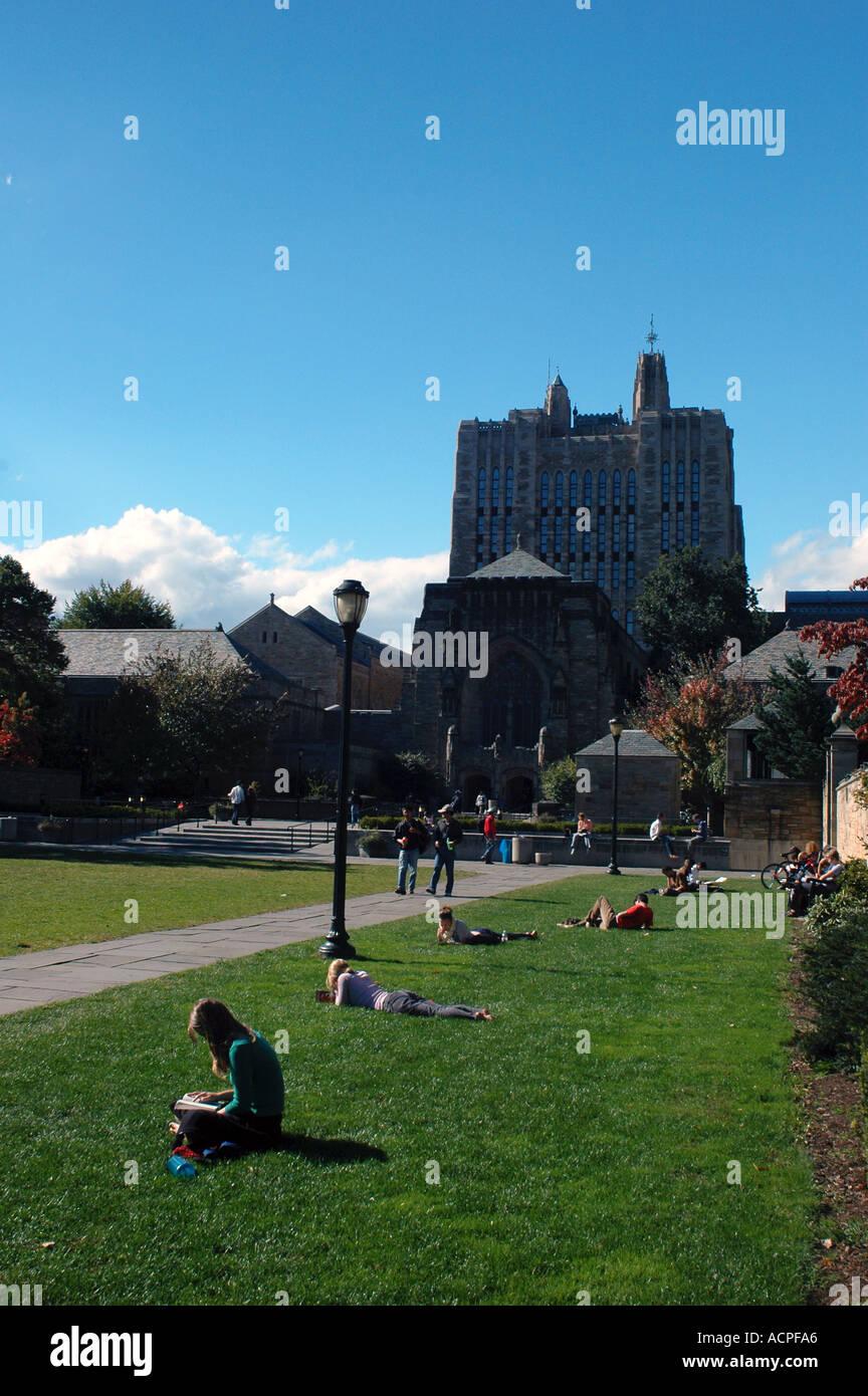 Usa University Study Stockfotos & Usa University Study Bilder - Alamy