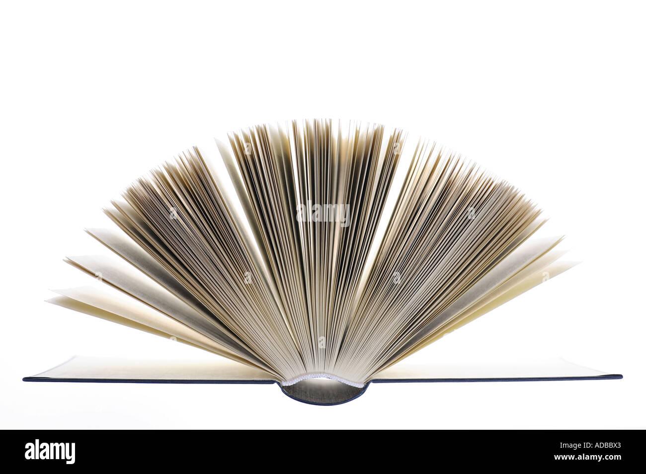 Seiten eines aufgeschlagenen Buches. Stockfoto