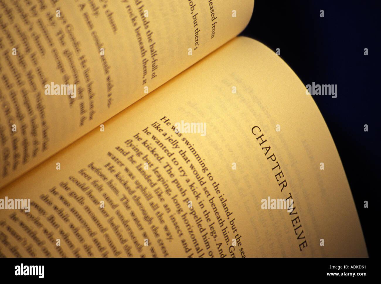 Buch, Kapitel 12 Stockbild